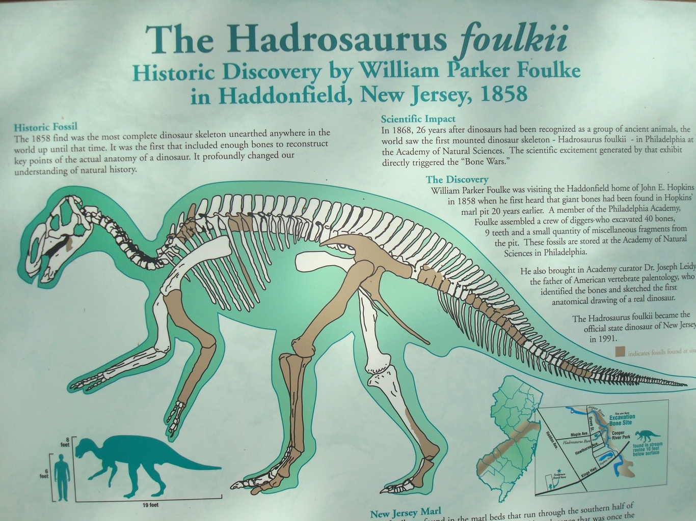 20120710 234323jpg the hadrosaurus sign