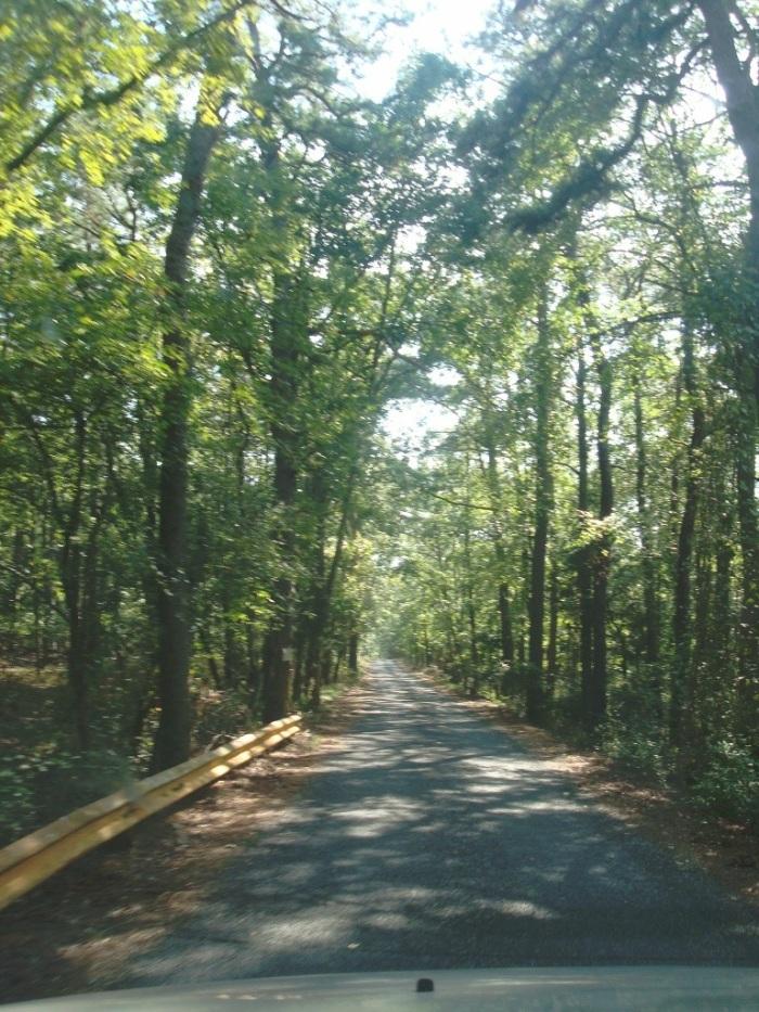 The narrow road leading into Menantico