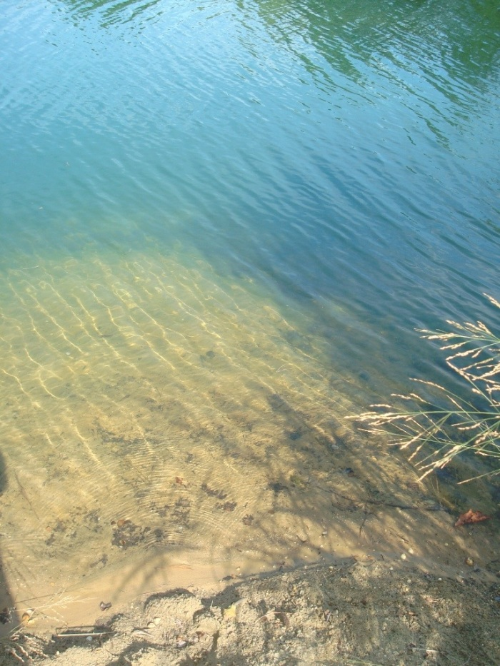 Me likey the crystal clear water