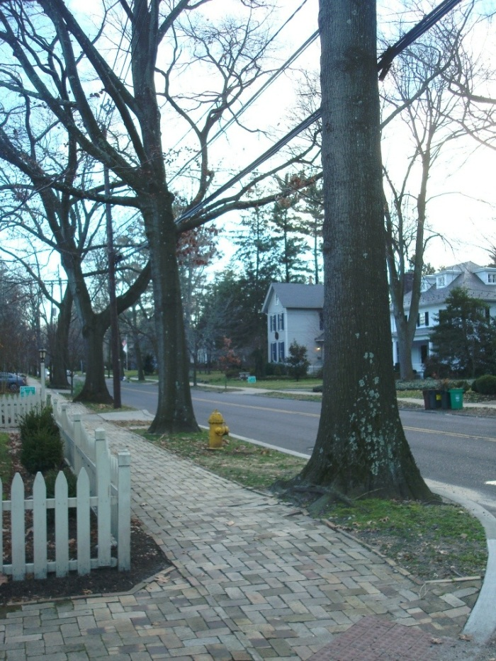 Warwick Road, Haddonfield